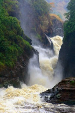Murchinson Falls ,Uganda