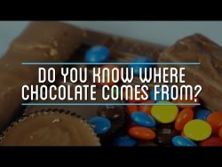 Do You Know Where Chocolate Comes From? – YouTube