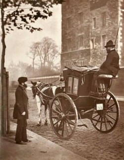 """TIL in 1894, London and New York were """"drowning"""" in horse poop. It was estimated tha ..."""