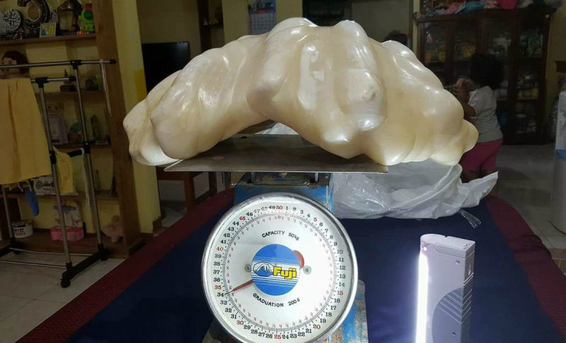 A Superstitious Fisherman Kept This $100 Million Pearl Under His Bed