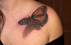 Now THAT is a butterfly tattoo!