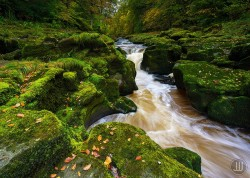 Bolton Strid: A Stream That Swallows People | Amusing Planet