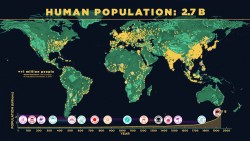 Watch How the World's Population Has Grown Over the Years -200,000 years to reach our firs ...