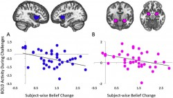 Neural correlates of maintaining one's political beliefs in the face of counterevidence : Scient ...