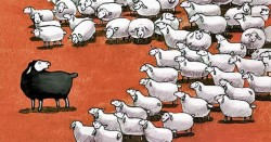 What Happens When You Rebel Against the Herd