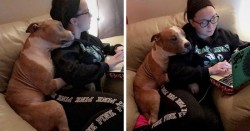Woman Adopts A Pitbull, And The Dog Can't Stop Hugging Her | Bored Panda