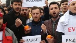"Fake slurs: Turkey hurls ""Nazi"" allegations to boost its president's support | The Economist"