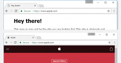 This Phishing Attack is Almost Impossible to Detect On Chrome, Firefox and Opera