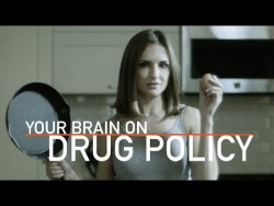 Your Brain On Drug Policy | Rachael Leigh Cook (2017) – YouTube