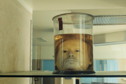 Perfectly preserved head of a serial killer, since 1841 – Album on Imgur