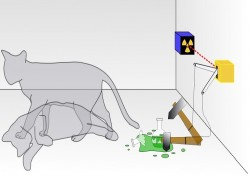 Physicists 'Breed' Schrödinger's Cat to Discover Limits of the Quantum World
