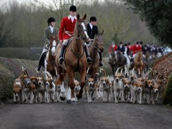 Theresa May announces she wants to bring back fox hunting | The Independent