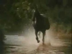 Black Beauty Theme (Galloping Home) – Denis King 1972 – YouTube