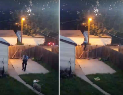 Disturbing Video Shows Cop Shooting Family's Dogs In Fenced Backyard | HuffPost