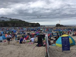 Seventh circle of hell, aka emmet infested Perranporth beach, roll on September …