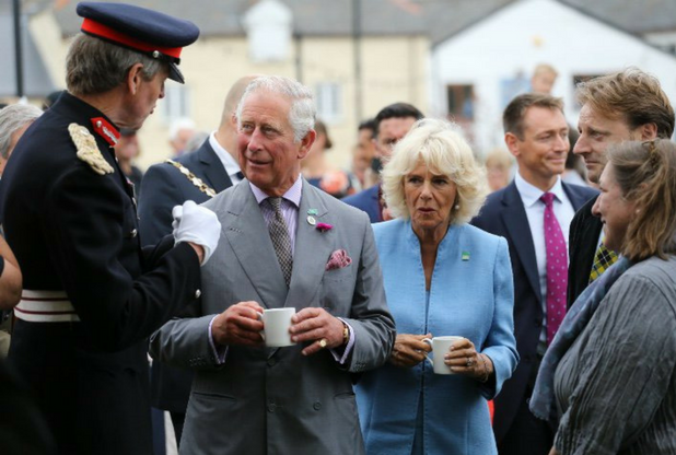 The land and property Prince Charles owns in Cornwall revealed | Cornwall Live