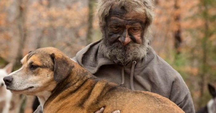 After caring for 31 dogs in the woods, homeless man says goodbye (8 photos)