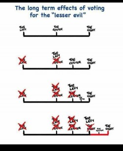 "The long term effects of voting for the ""lesser evil"""