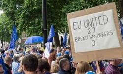 Only a second referendum can pull us out of the Brexit fire | Geraint Davies | Opinion | The Gua ...