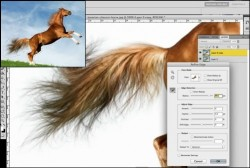 10 Useful Photoshop Image Extraction Tutorials – Creative CanCreative Can