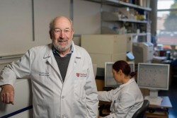Cancer 'vaccine' eliminates tumors in mice | News Center | Stanford Medicine