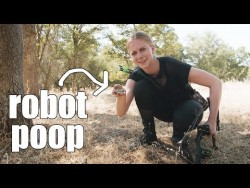 I HUNTED A ROBOT (and ate it) – YouTube