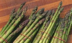Spread of breast cancer linked to compound in asparagus and other foods | Science | The Guardian