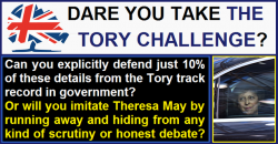 The Tory challenge