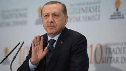 Evolution Will No Longer Be Taught in Turkish Schools   Gizmodo UK