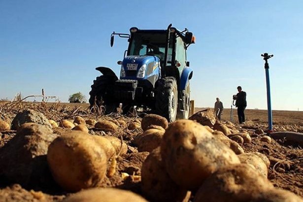 Turkey imports almost all agricultural products
