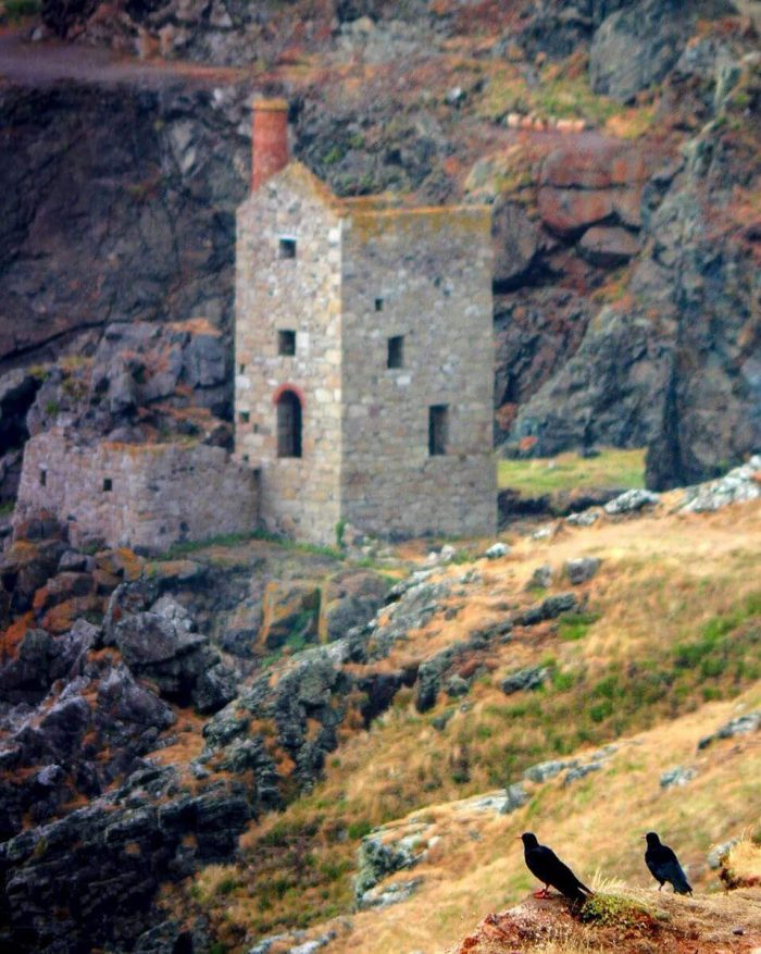 Choughs and Tin Mines. Ultimate Cornwall