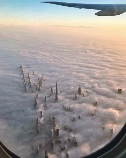 Dubai's towers through the fog