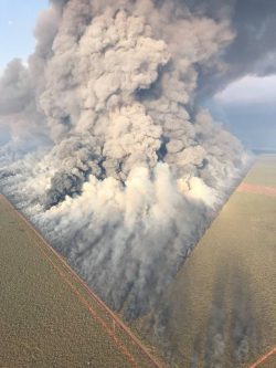 Australian fire breaks in action