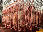 Belgium bans halal and kosher slaughter methods which see animals killed without being stunned first