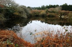 Cornwall secret wild swimming spot sells for a staggering amount