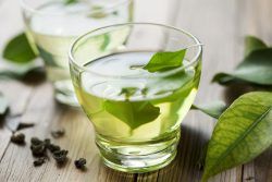 Green tea cuts obesity, health risks in mice Follow-up study in people underway