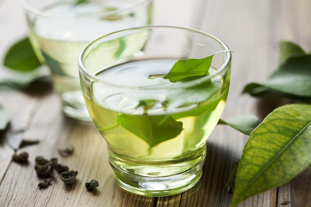 Green tea cuts obesity, health risks in mice Follow-up study in people underway