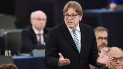 'Their first decision was to go on holiday': EU's Verhofstadt fears UK will wa ...