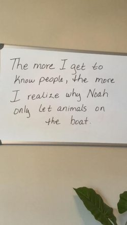 The more I get to know people, the more I realise why Noah only let animals on the boat