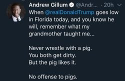 Never wrestle with a pig. You both get dirty. But the pig likes it.