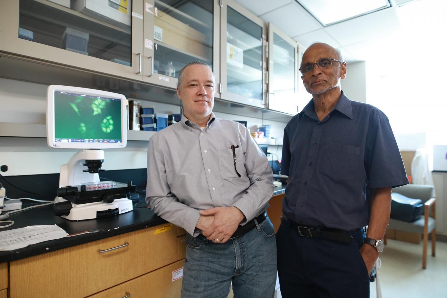 Killing the seeds of cancer: A new finding shows potential in destroying cancer stem cells