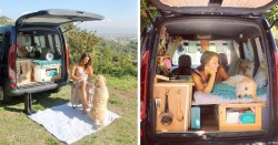 Woman Restores Old Van To Travel Around The World With Her Dog | Bored Panda