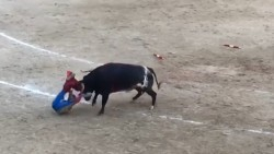Bullfighter is gored in the face at Spain's biggest arena | Daily Mail Online