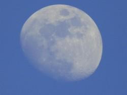 Lovely evening moon tonight, straight off the camera