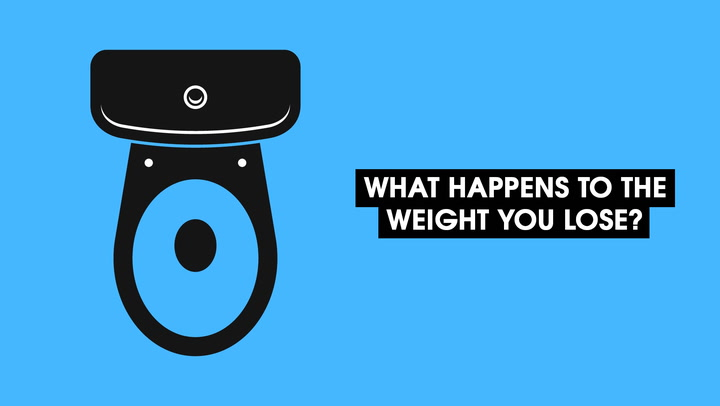 Video: Where Does Fat Go When We Lose Weight? | IFLScience