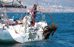 5 tips: how to deal with weed on an offshore race