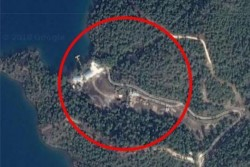 Reports about 40 thousand trees cut for Erdoğan's palace banned for 'insulting president&# ...