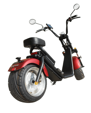 Citycoco electric scooters