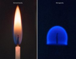 TIL In zero gravity, a candle's flame is round and blue.