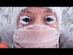 Living in the Coldest Place on Earth (Siberia) – BBC Documentary HD